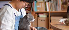 革靴店『uzura』を営む高橋さんと飼い猫のタビくん