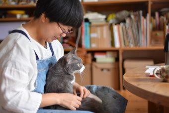 猫が教えてくれること「癒えるのを信じて待つ」/uzuraさんちのタビくんの場合vol.1