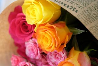 感謝の気持ちは一味違う花束で。アフリカ生まれの薔薇専門店「AFRIKA ROSE」
