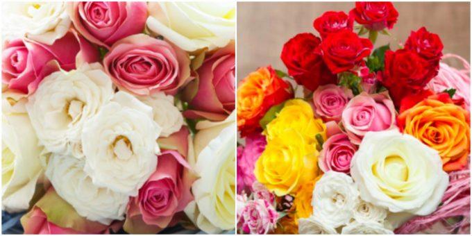「AFRIKA ROSE」の『朝のナイバシャ湖』、『ラフィキの笑顔』と名付けられた花束