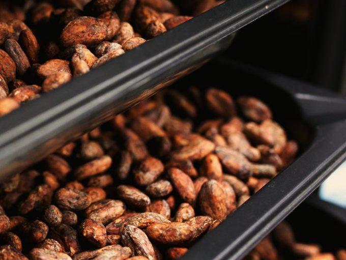 COCO(ココ)のこだわりのカカオ豆