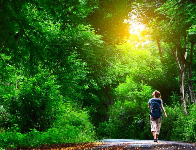 森の中を歩く女性の写真