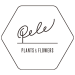 PELE plants & flowerのロゴ