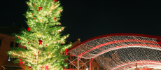 「横浜赤レンガ倉庫」にあるクリスマスツリーの写真