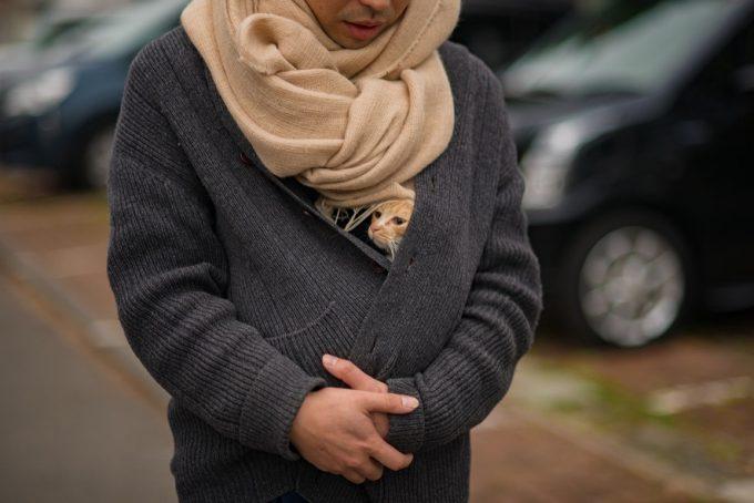 笹倉さんの服の中に入るかわいい子猫のトトちゃん