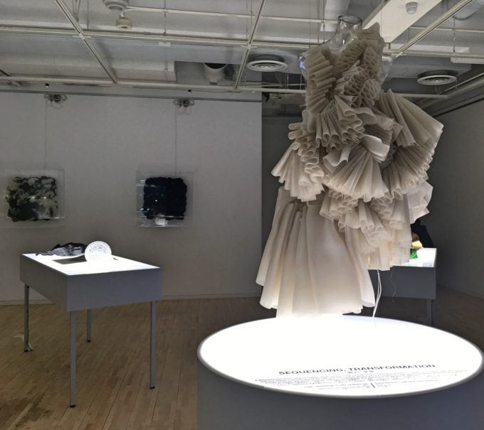 グレース・タンの『Materials&Methods』の展示の様子