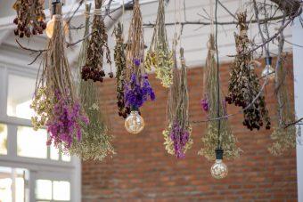 用意するのはお花と輪ゴムだけ。ドライフラワーの基本の作り方とお手入れ方法