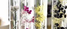 お部屋が華やぐおすすめインテリア。おしゃれな植物標本「ハーバリウム」<3選>