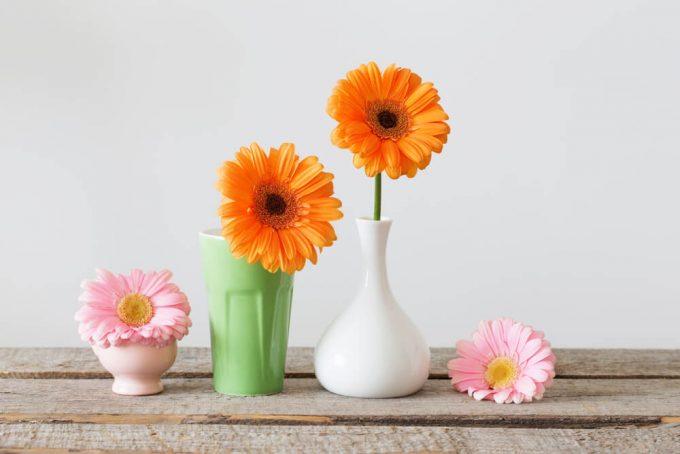 お花の美しさや生命力が引き立つ一輪挿し