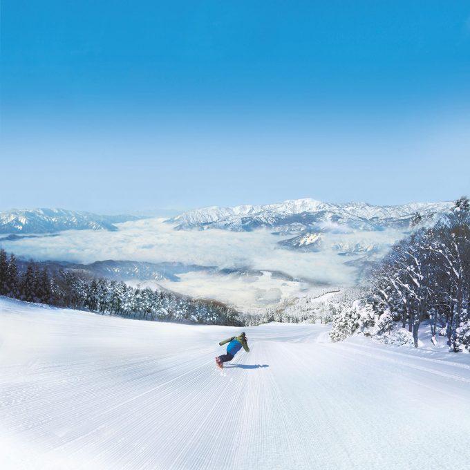 スキージャム勝山の広々としたゲレンデ