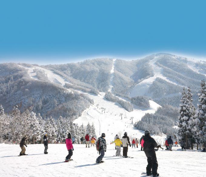 スキージャム勝山の雪景色が美しいゲレンデ