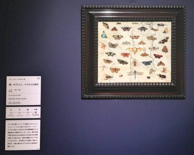 東京都美術館で開催中の『ブリューゲル展 画家一家 150年の系譜』で展示されている作品1