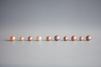 一つとして同じものはない。色褪せないびわ湖真珠の魅力を伝える「神保真珠商店」
