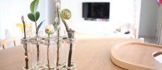 お部屋のコーディネートに合わせやすい、ガラス花器に入った和花
