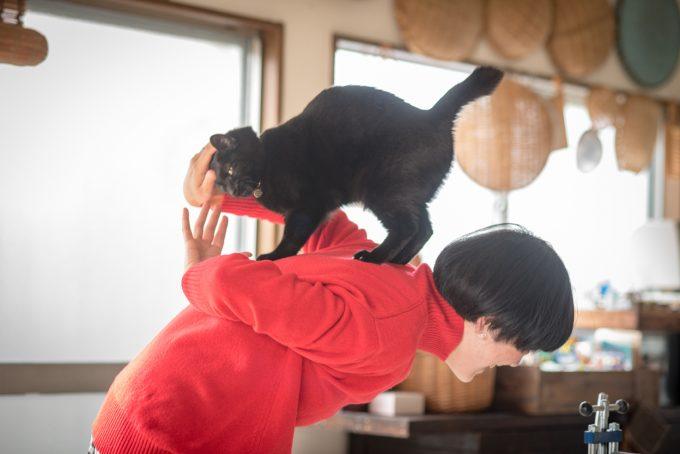 イラストレーター坂本さんと黒猫の墨ちゃん