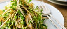 シャキッ、ポリッ、カリッ!癖になる食感の「ごぼうとちくわのエスニックサラダ」のレシピ