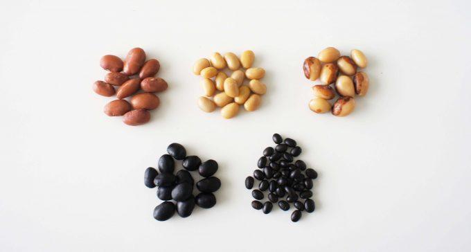 ドライパックの豆5種類