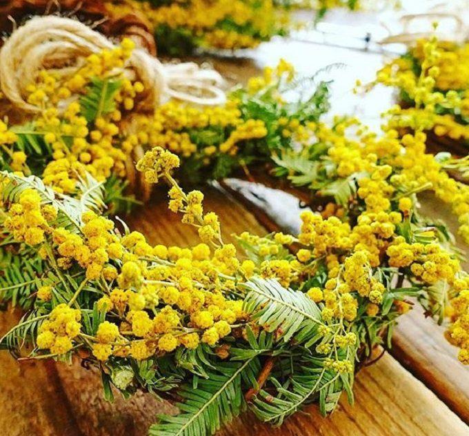 チバセイサクジョの黄色いお花のドライフラワー