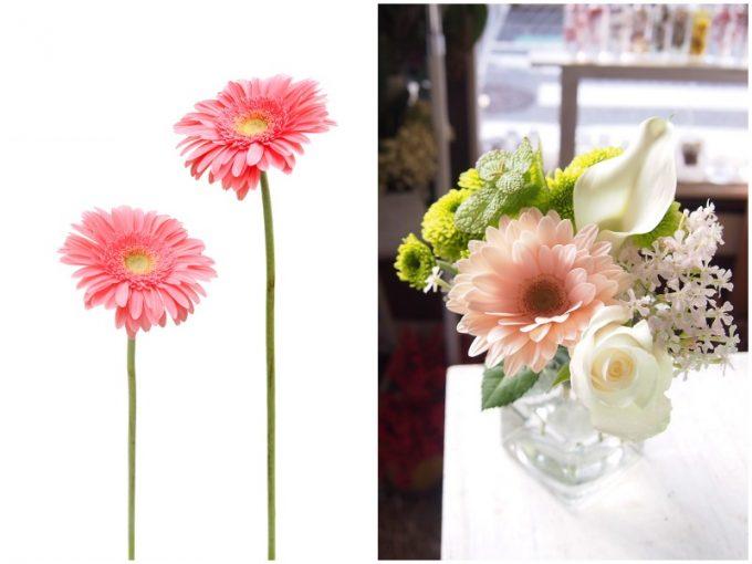 ピンクのガーベラとガーベラが入った花束