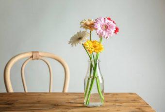 お部屋に春の彩りを。華やかで贈り物にもぴったりな春のお花と花言葉特集