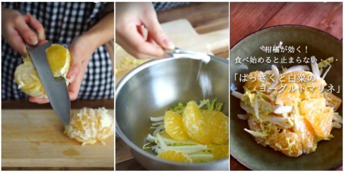 はっさくと白菜のヨーグルトマリネの作り方手順