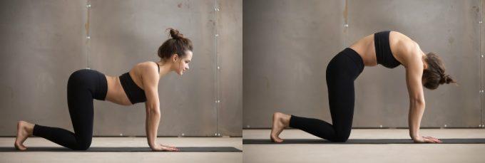 背骨を支える筋肉を整えるストレッチの手順