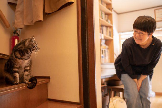 イラストレーター・ユカワアツコさんと愛猫ハチ(オス・5歳)