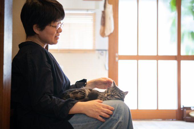 ユカワアツコさんの膝の上で寝るかわいい猫のハチ