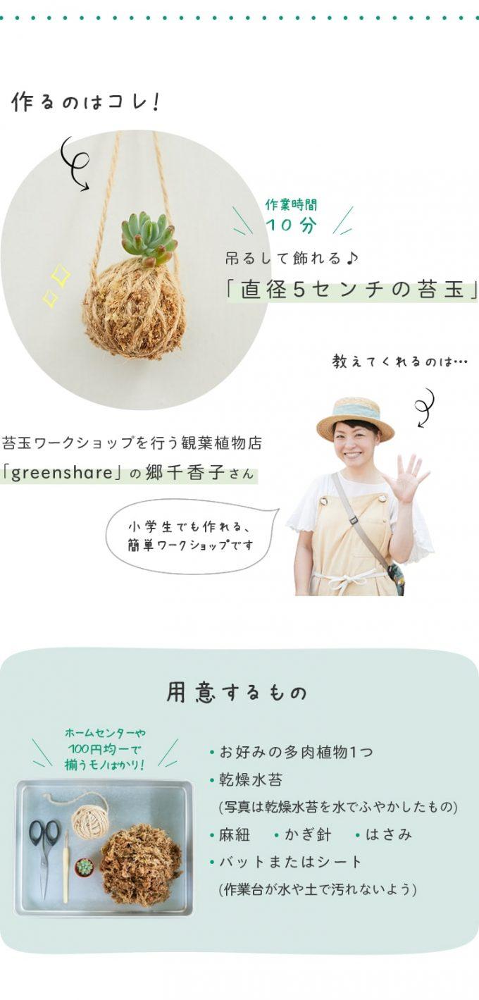 「多肉植物の苔玉」の材料