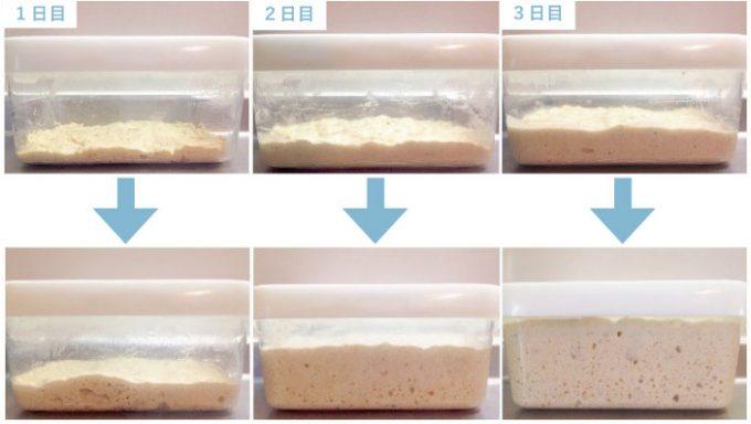 パンの元種の経過の様子