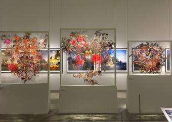 多彩な写真から自分の学びへ。東京で開催されている写真展<3選>