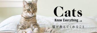 猫が教えてくれること
