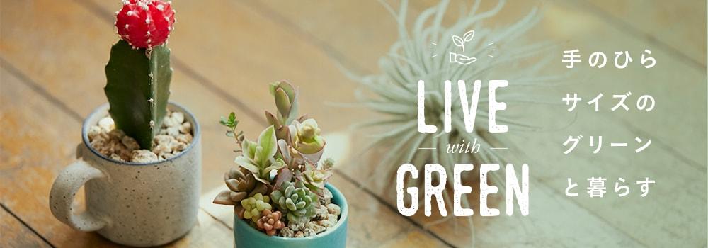 手のひらサイズのグリーンと暮らす