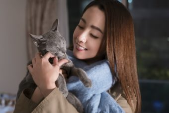 自分を人間だと思い込む猫が、元アイドルのアラサー女子に恋をした。映画『猫は抱くもの』