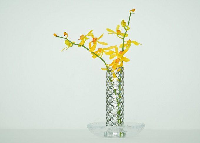 PLANT'S JEWEL<プランツジュエル>の使用例2