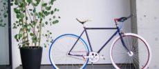 Cocci Pedale<コッチペダーレ>のカスタマイズ自転車1