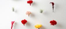 まるでお花が浮遊しているかのよう。壁面を華やかに彩る「naft」のフラワーリング