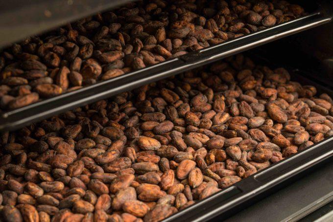 xocolのチョコレートの材料