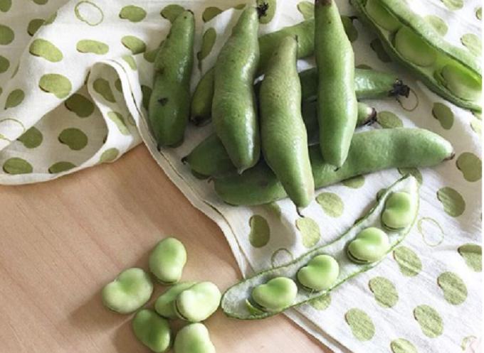 エンドウ豆の模様の手ぬぐい