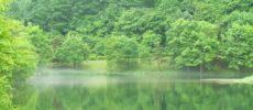 秋の旅行におすすめ長野・蓼科の旅