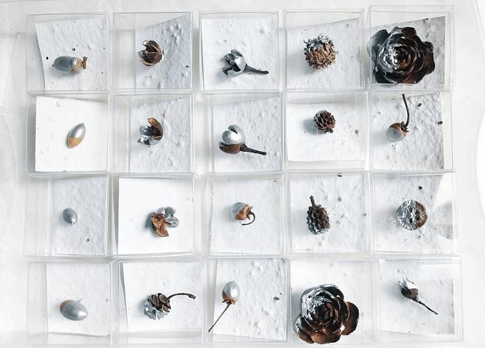 「mie nishimura」のアクセサリーに使う木の実数種類