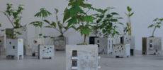 モルタルでできた「Motif」の建物型プランター