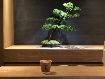 盆栽とコーヒーの素敵な関係。「BONGEN COFFEE」でやすらぎのひとときを