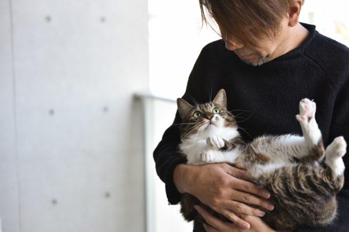 デザイナー&編集者・籾山ご夫妻の愛猫トラが抱かれている様子