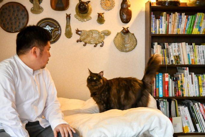 見つめ合うイラストレーター山中正大さんと飼い猫のウキウキ