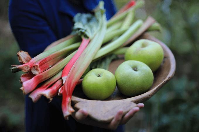タロー屋のパン作りに使われる果物や野菜