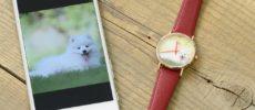 好きな写真を文字盤にできる腕時計