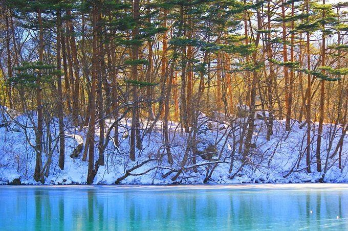 「毘沙門沼」の冬の風景
