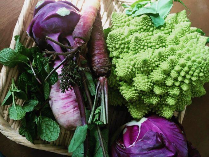 ケータリングチーム「kokiliko(コキリコ)」の料理使われる野菜