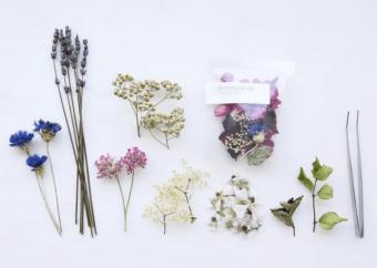 暮らしに花を飾るように。見た目にもこだわった「Shirakaba lab」のハーブティー